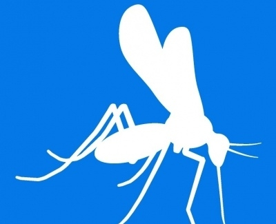 Anti-Zika Envelope Mab 1176-76 100 ug