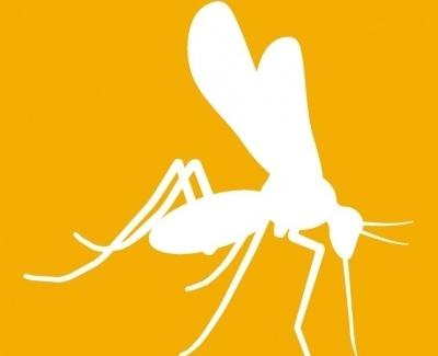 Anti-Zika Envelope Mab 1176-46 1MG