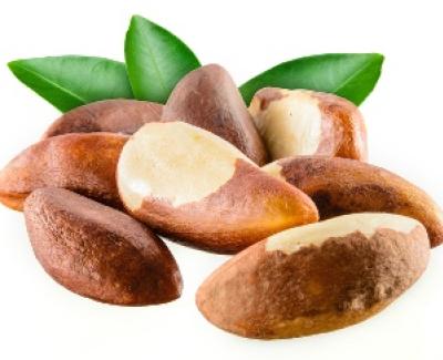 Brazil Nut ELISA Kit - 48 wells