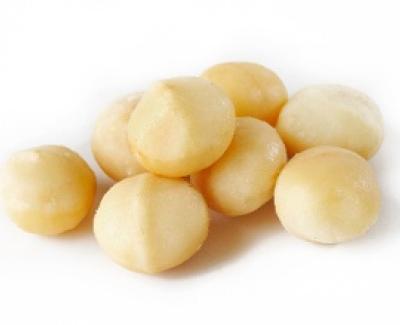 Macadamia Nut ELISA Kit - 48 wells