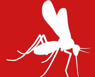 Zika NS5 Mab 8B8 500 ug