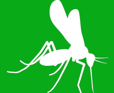 Zika NS5 Mab 7A9 500 ug