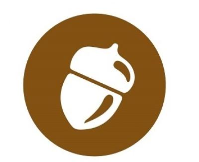 almond, almond protein